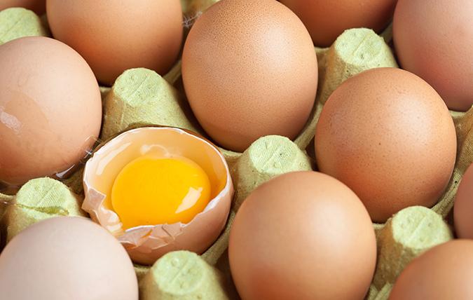råa ägg gravid livsmedelsverket